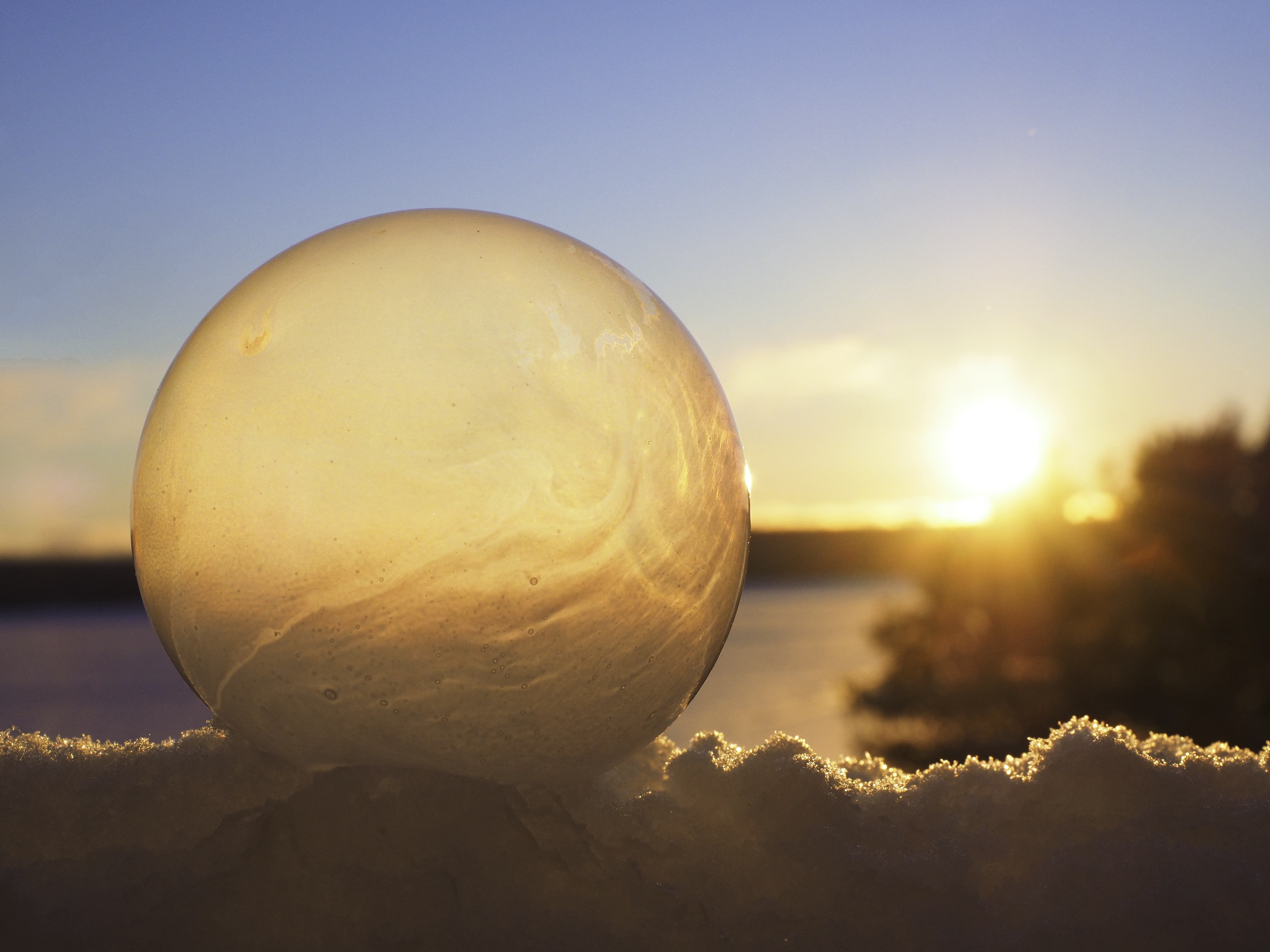 Winter Photo Project: Frozen Bubbles Golden Orb