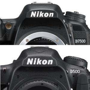Nikon D7500 vs Nikon D500 featured image