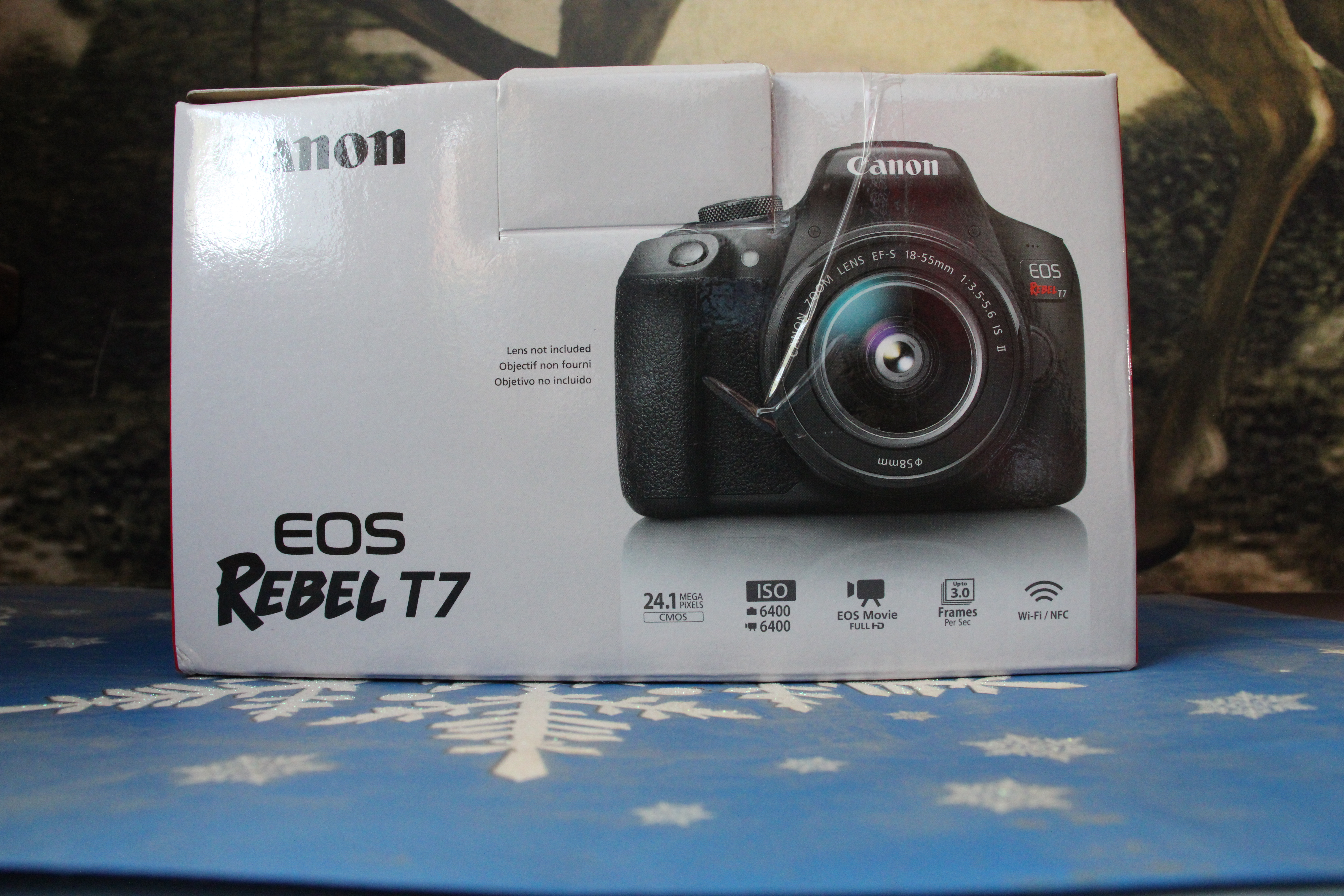 Canon T7 ISO 3200