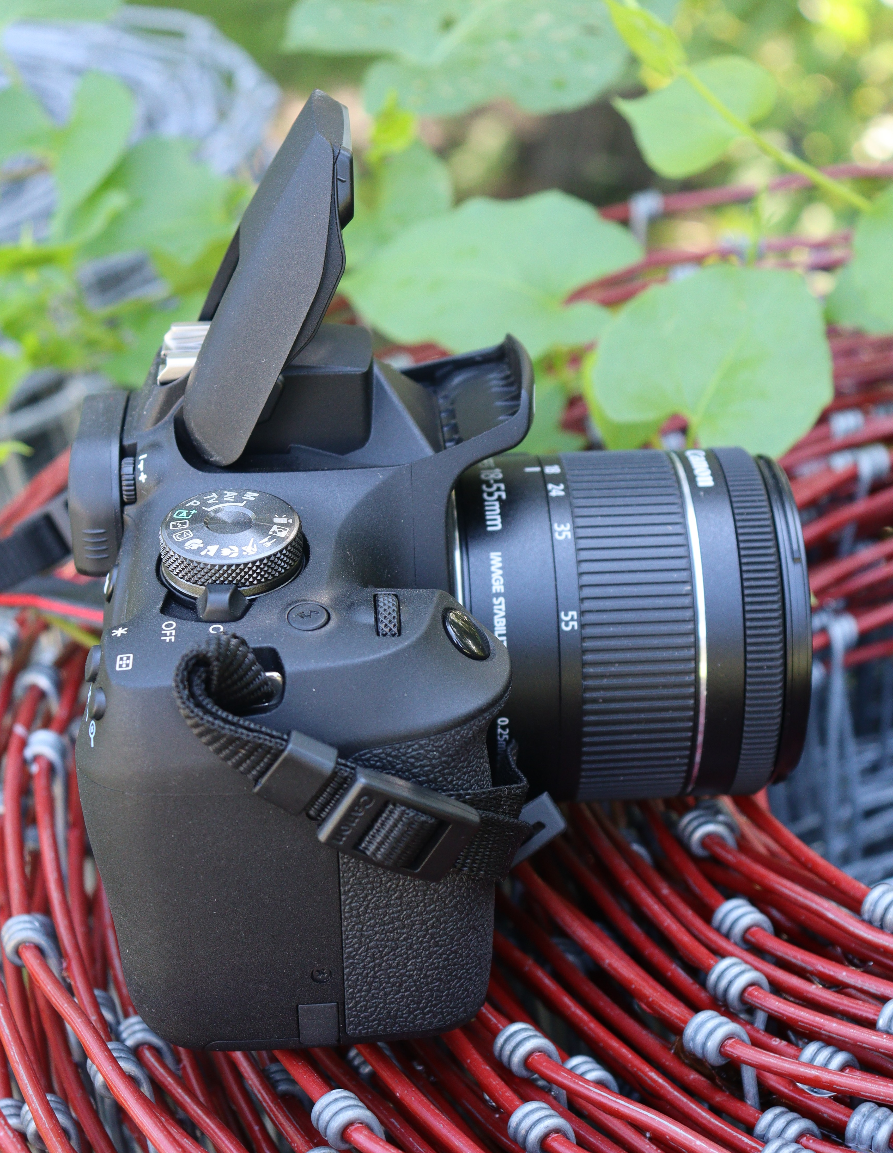 Canon T7 right side